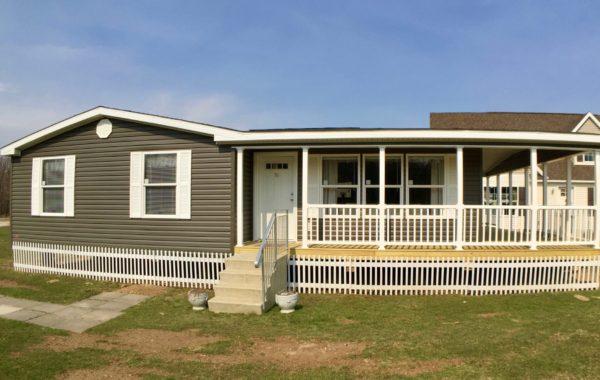 A8801AY Colony Eastland